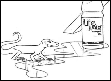 Lizard walks up to Sobe life water puddle on the ground. Line drawing storyboard panel